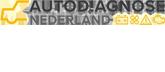 Autodiagnose Nederland